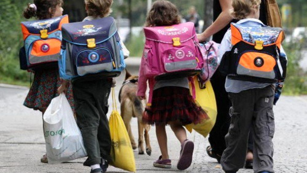 Preferenza Stella, il cane randagio che accompagna i bambini a scuola PL84